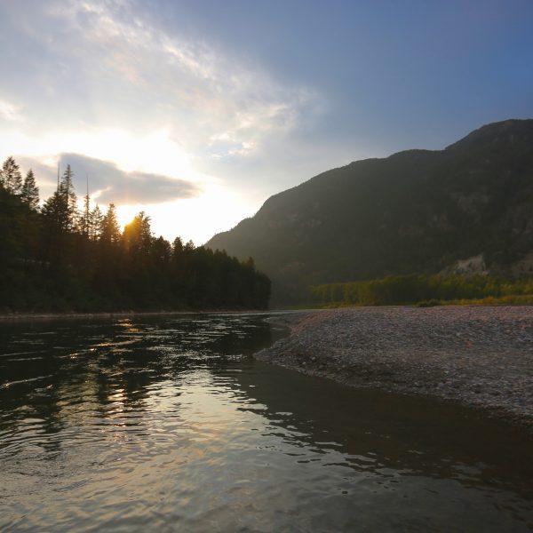 Montana Fishing Reports Archives - Wild Montana Anglers