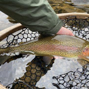 Fishing Report 3-30-20